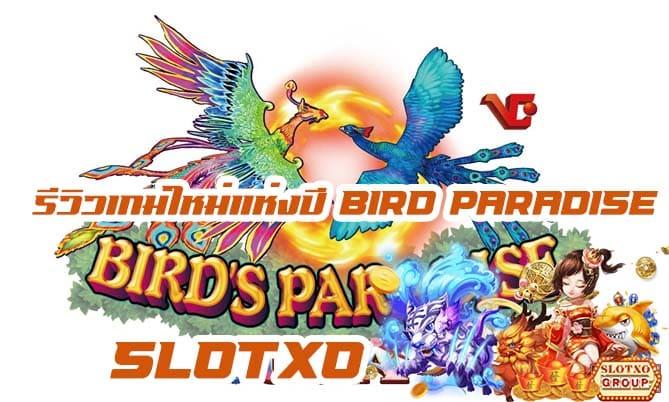 รีวิวเกมสล็อต Bird Paradise-Flying Squirrels 2021