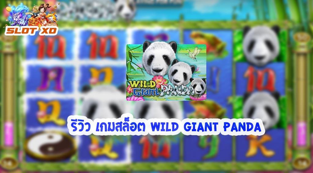 รีวิวเกมสล็อต Wild Giant Panda 2021